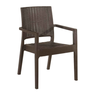H-jinhui Dining Plastic Rattan Arm Chair